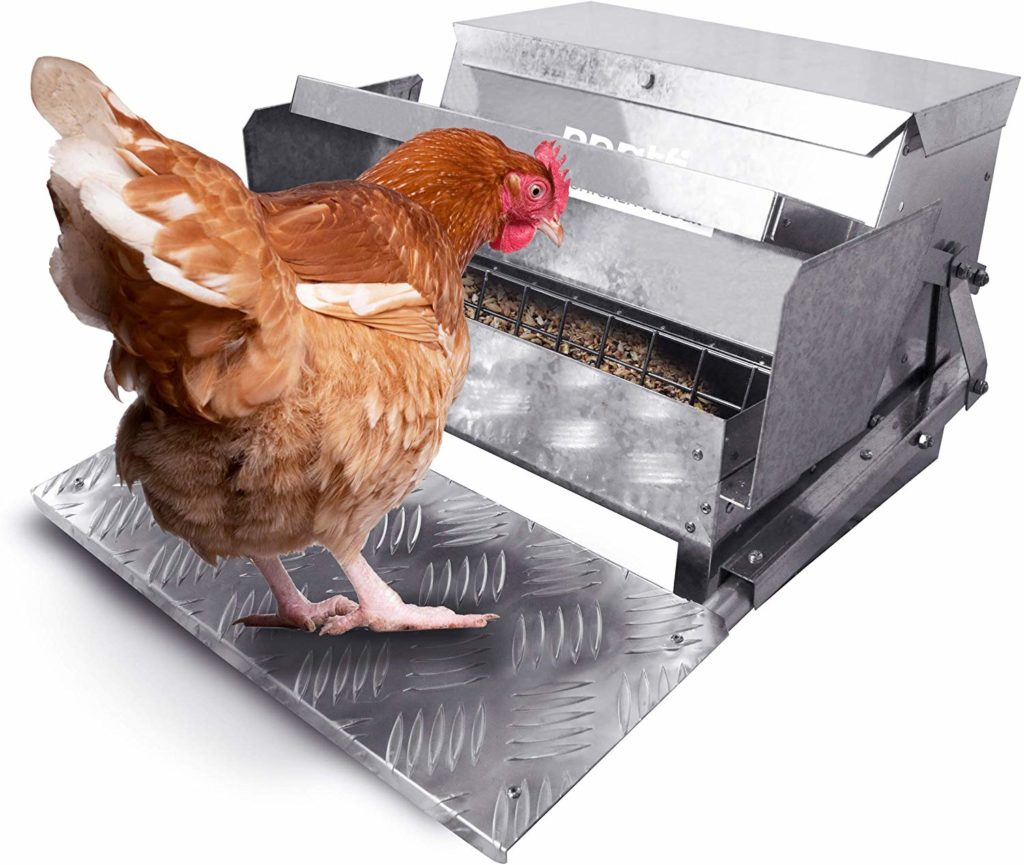 automatic Hen Feeders | Automatic Chicken Feeder